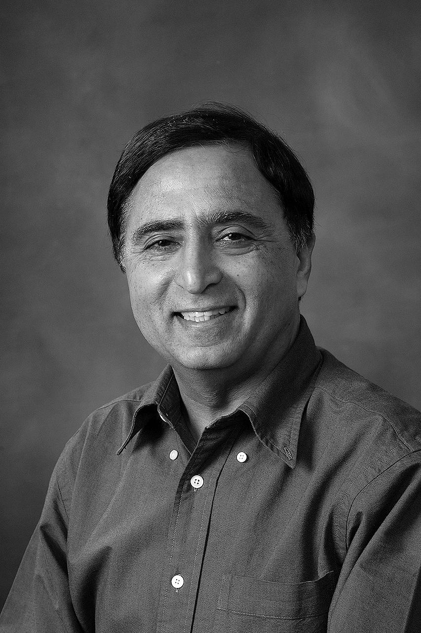 Professor Narendra Ahuja